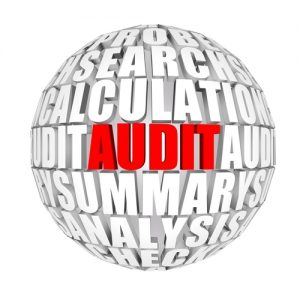The-audit-process-isnt-fun-but-it-can-become-significantly-more-efficient_2122_40068778_0_14053976_500[1]